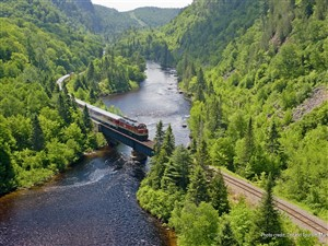 Group of Seven Agawa Canyon